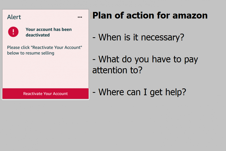Plan of action for amazon, get it written, get help